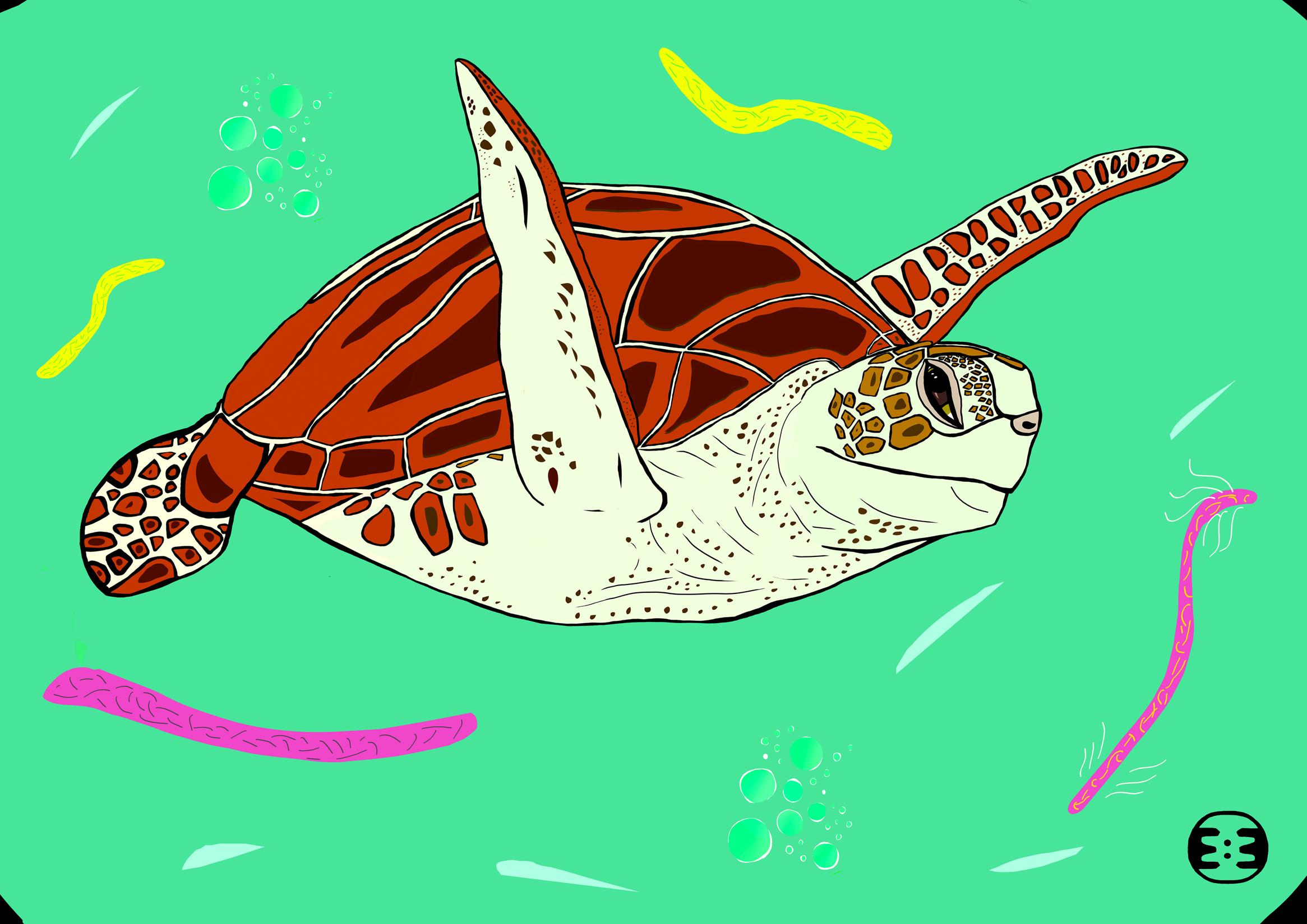 turtlestepst